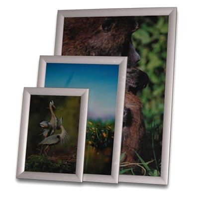 Clip Frames Archives - Clip-Tite